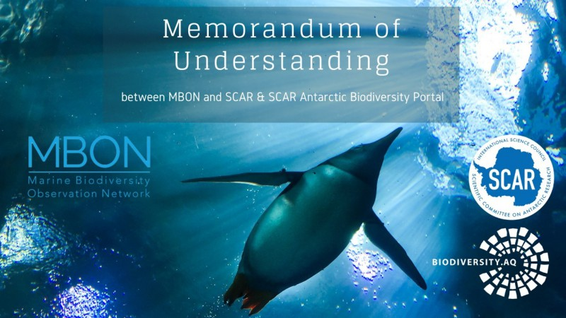 Coordinating the observation of biodiversity in the sea: a new collaboration